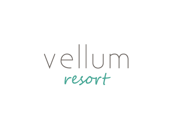 Vellum - The Next Generation of WordPress Themes